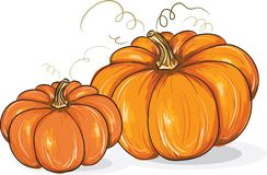 Two pumpkins Stock Images