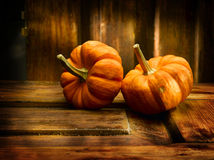 Two pumpkins Stock Photos
