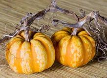 Two Pumpkins Stock Photo