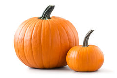 Free Two Pumpkins Stock Photography - 60550562