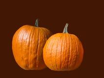 Two Pumpkins against Autumn Color Stock Photos