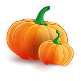 Two pumpkins. Big and small Royalty Free Stock Photography