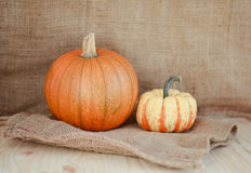 Two pumpkins close up on a hessian background Stock Image