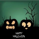 Two pumpkins Stock Image
