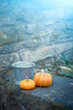 Two pumpkins in a dreamy garden Stock Image