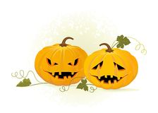 Two pumpkins. Halloween. Two pumpkins on a white background Stock Photo