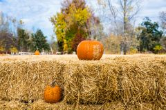 Two Pumpkins with Hay Bales Royalty Free Stock Images