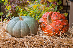 Two pumpkins on hay Royalty Free Stock Photos