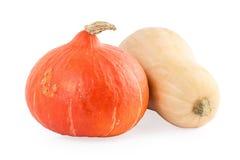 Two Pumpkins hokkaido and butternut Stock Photos