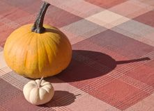 Two pumpkins on a table Stock Photography