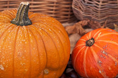 Two pumpkins with leaves and wodden basket Royalty Free Stock Photos