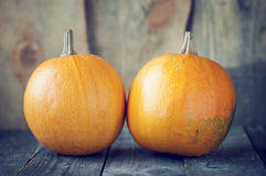 Two pumpkins stock photography