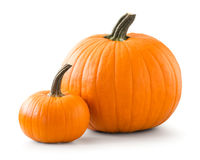 Two pumpkins Royalty Free Stock Image