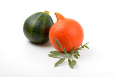 Two pumpkins with sage Royalty Free Stock Photo
