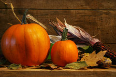 Two pumpkins on the shelf Royalty Free Stock Photos
