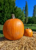 Two pumpkins on straw royalty free stock images