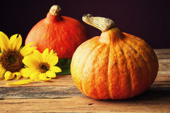 Two pumpkins and sunflower on wooden table Royalty Free Stock Photo