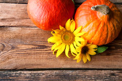 Two pumpkins and sunflower on wooden table. Copyspace Royalty Free Stock Image