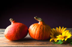 Two pumpkins and sunflower on wooden table. Copyspace Stock Photography