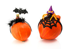 Two  pumpkins wearing a halloween costume headbands. Witch hat, bat and spider. Stock Image