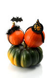 Two  pumpkins wearing a halloween costume headbands. Witch hat, bat and spider. Royalty Free Stock Image