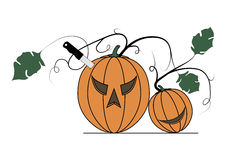 Two pumpkins on a white background. Vector illustration of two pumpkins on a white background Royalty Free Stock Images