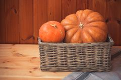 Two pumpkins in wicker basket near wooden wall. Two ripe orange pumpkins in wicker basket near wooden wall stock photography