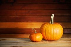 Two pumpkins on wooden table royalty free stock photos
