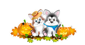 Two puppies with autumn decoration Stock Photography