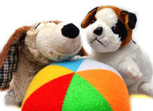 Two puppies and a ball Stock Photography