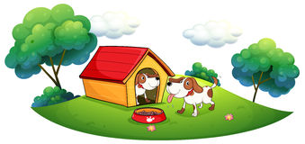 Two puppies with a doghouse Royalty Free Stock Photography