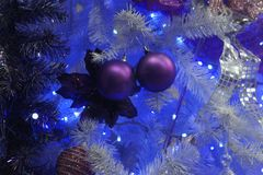 Two purple christmas balls. A picture of 2 christmas purple balls,in a christmas tree,in a day of december Stock Photo