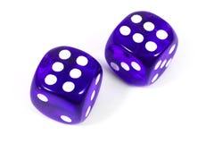 Two Purple Dice Stock Photo