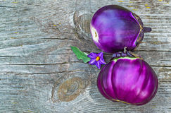 Two purple eggplants on a old wooden table Stock Photos