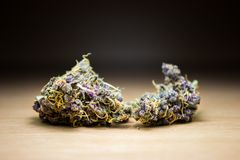 Purple gold weed buds macro on wood desk royalty free stock photography