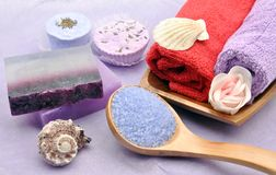 Two purple soaps Royalty Free Stock Photo