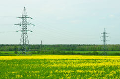 Two pylons Royalty Free Stock Photo