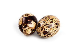 Two quail eggs Stock Photos