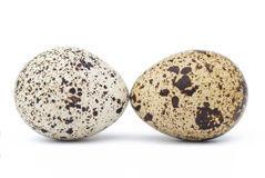 Two quail eggs. On a white background Stock Image