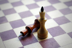 Two Queens on a chess Board. Chess. Black and white. Closeup stock image