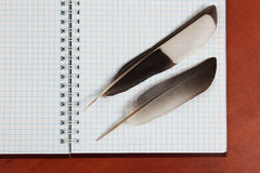 Two quill pen lying on an open blank notebook stock images