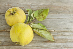 Two quince fruits. On wooden background Royalty Free Stock Photos