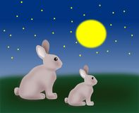 Two Rabbits. Sitting in the moonlight Royalty Free Stock Images
