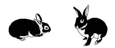 Two Rabbits. Two Black and White Rabbits Royalty Free Stock Photography