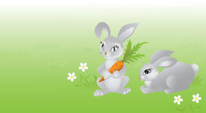 Two rabbits on green meadow. Royalty Free Stock Photo