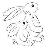 Two rabits looking towards outline Royalty Free Stock Image