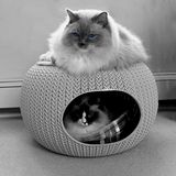 Two ragdoll cats with blue eyes in cozy pet home. Royalty Free Stock Photography