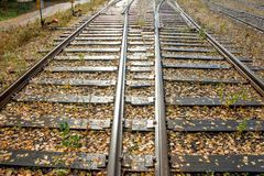 Two railway lines going to the perspective of sunny days.  stock image