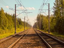 Railway tracks in the forest on a sunny summer day. Two railway tracks running into the distance with a thick forest on both sides royalty free stock photo
