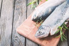 Two rainbow trout on a board. Two rainbow trout on a cutting board with herbs, ready for cooking Royalty Free Stock Images